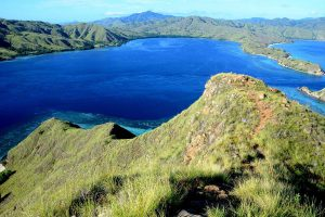 Visit Komodo National Park: Dragon Island